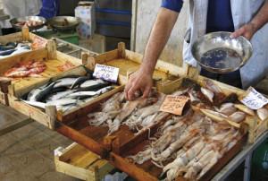 3012_peso pesce