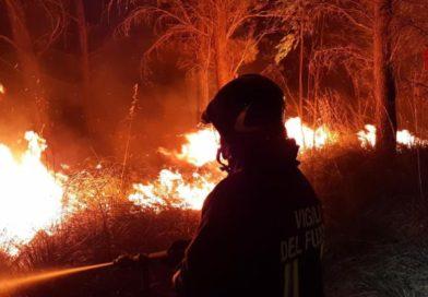FdI Trapani Erice su incendi occorsi, a chi deve essere imputata la mancata sorveglianza delle aree boschive